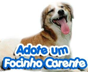 22 de outubro, sábado, de 8 às 14h: Rio de Janeiro