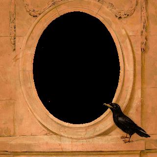 frame crow illustration digital