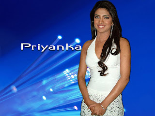 2012 Beautiful Actress Priyanka Chopra latest wallpapers