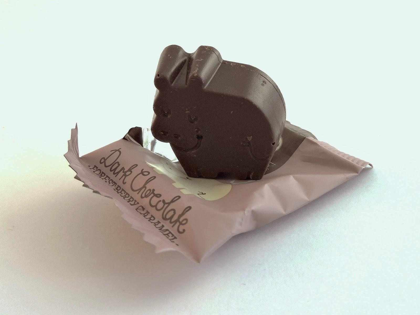 Hippo Barú