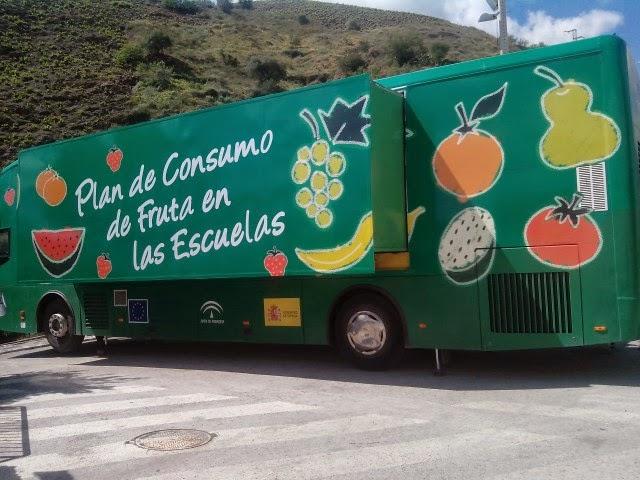 Image result for el frutibus