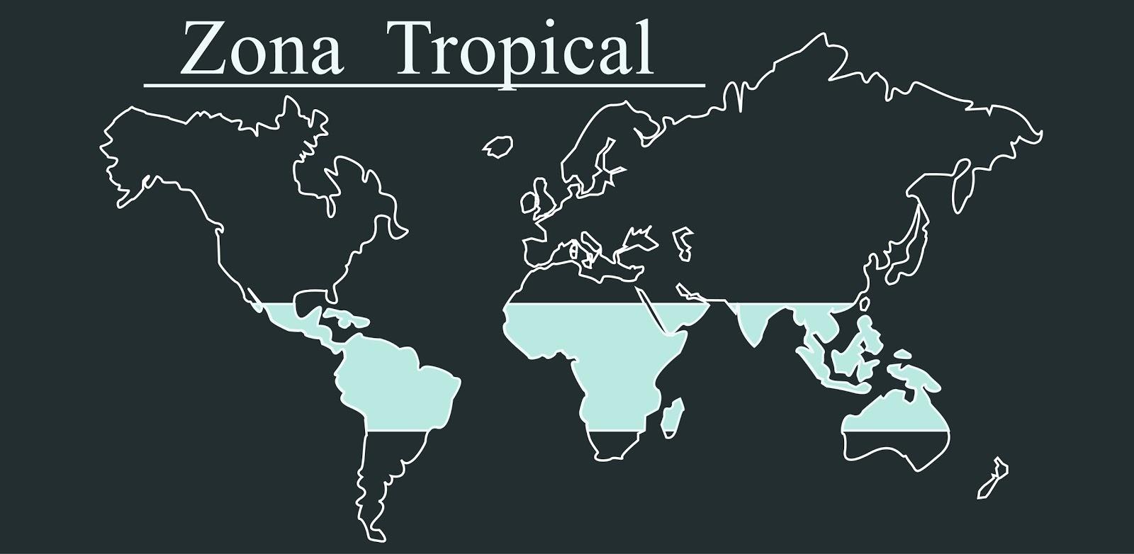 cartel zona tropical