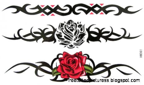 Buy Free shipping Colorful amp Black Rose