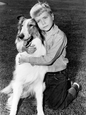 timmy from original lassie show
