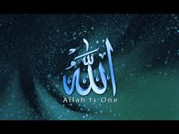 """Ya """"Allah! Give to all -Wisdom of Peace, Non-Violence & Love & Kindness to all Humanity"""
