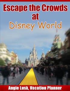 Considering a Disney Vacation?