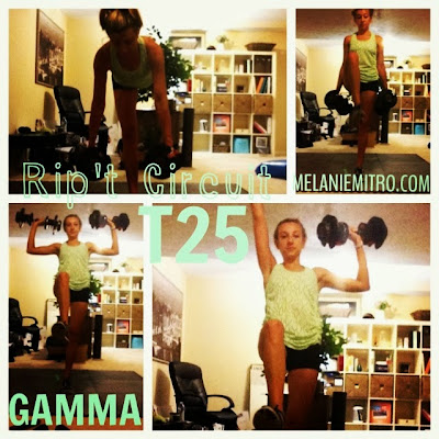 T25 Gamma Rip't Circuit