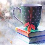 Los libros abren tus ojos