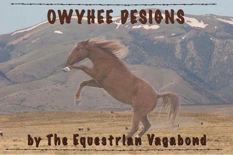 Owyhee Designs Blog