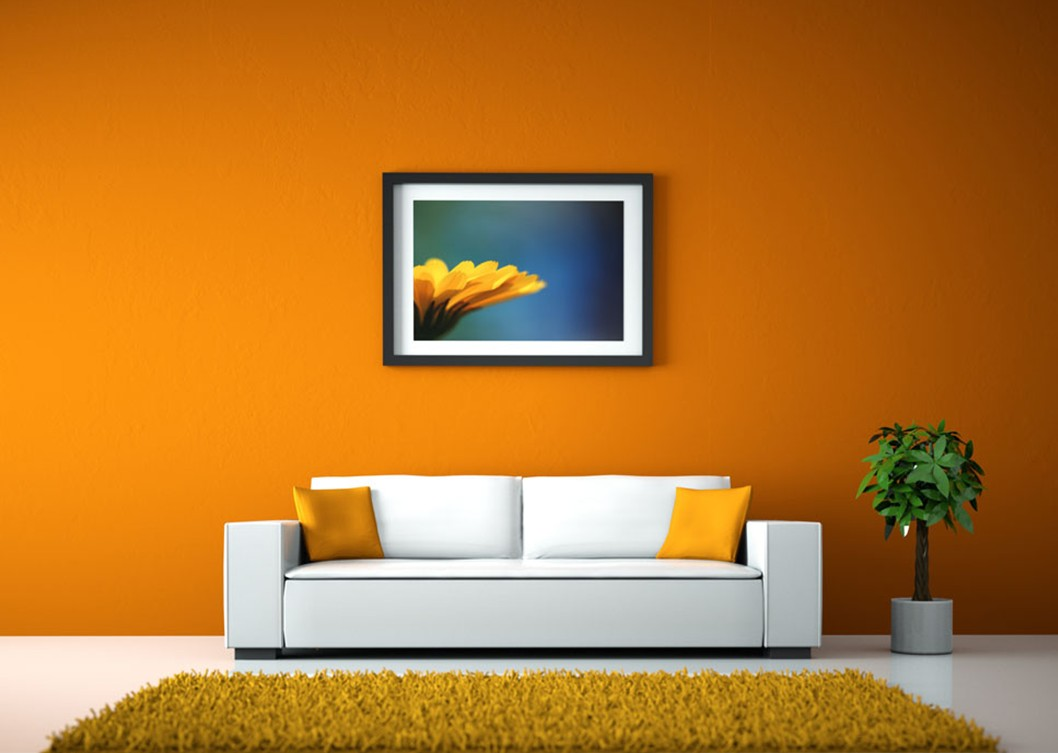 determine the color for living room walls — living room decorating