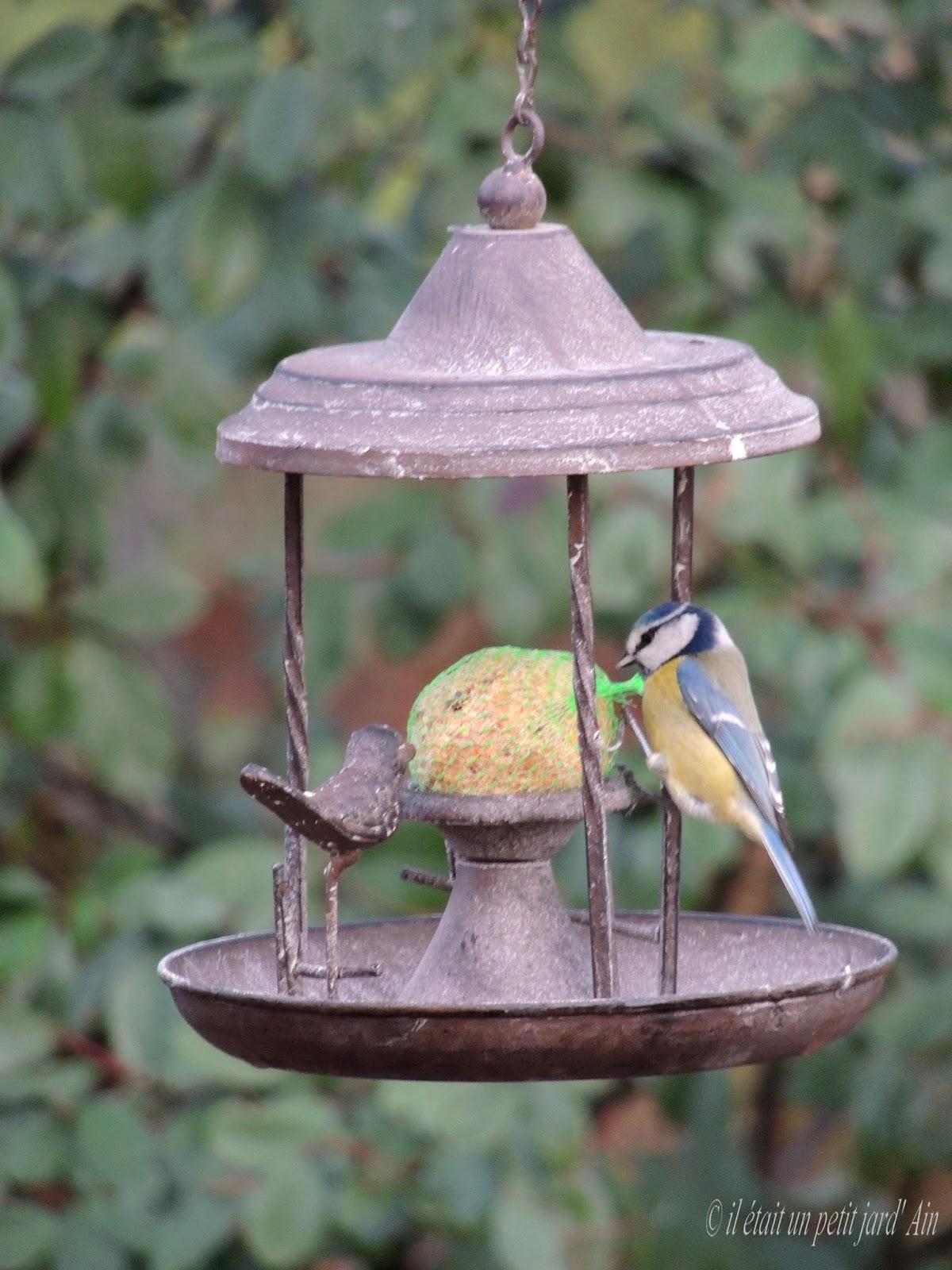 Il etait un petit jard 39 ain poesie jardiniere - Faire peur aux oiseaux jardin ...