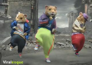 kia-hamster