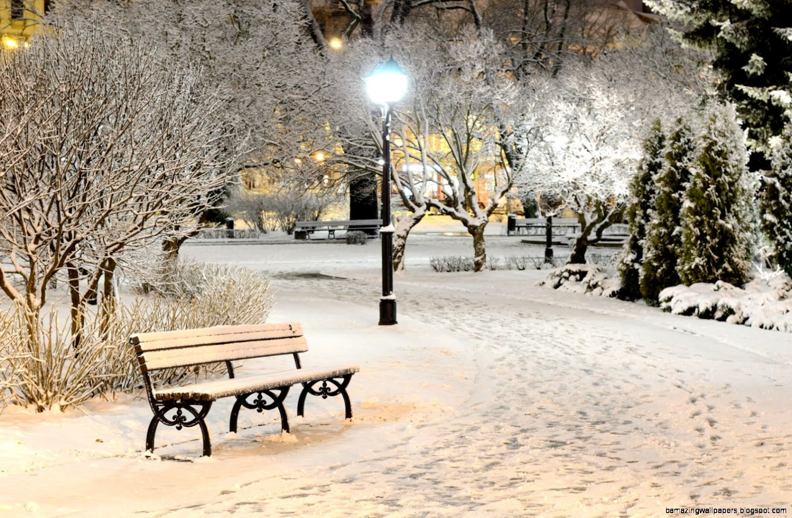 Winter Wonderland  Or Ground Zero for Flu  Virus Season  The