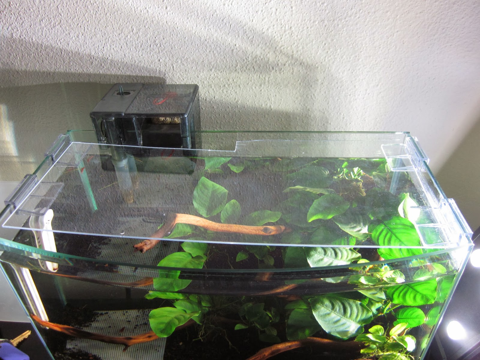 Как сделать аквариум своими руками из силикатного стекла 13