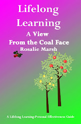 Lifelong Learning: A View From the Coal Face