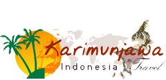 Karimunjawa Indonesia Travel Accommodations | Best Diving Snorkeling | Paket Wisata Karimunjawa