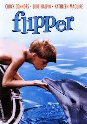 Baixar Filme Flipper: O Menino e o Delfim (Dublado)
