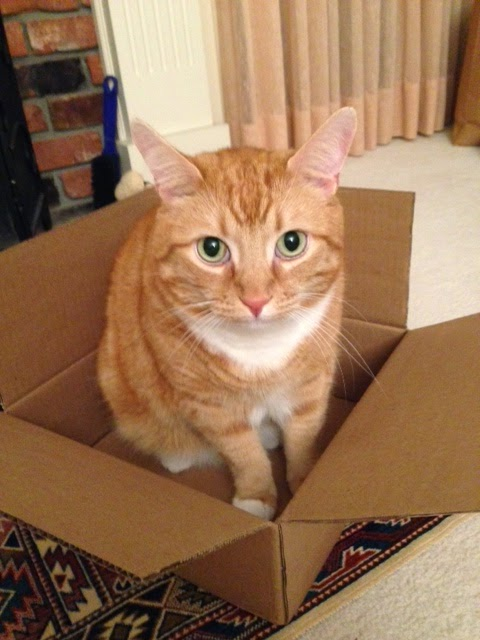 Ripple claiming box