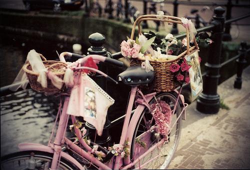 bike.jpg (500×341)