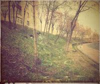 Izvoare pe Bulevardul Pandurilor din Targu Mures