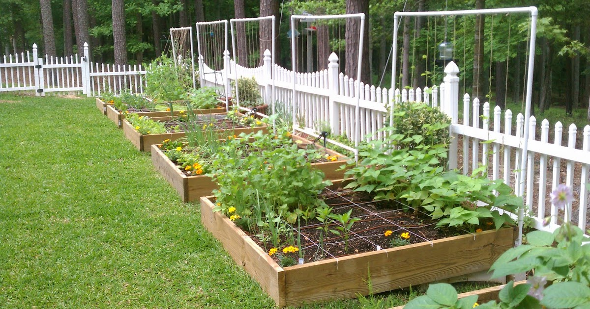 Image Result For Watering Vegetable Garden With Drip System