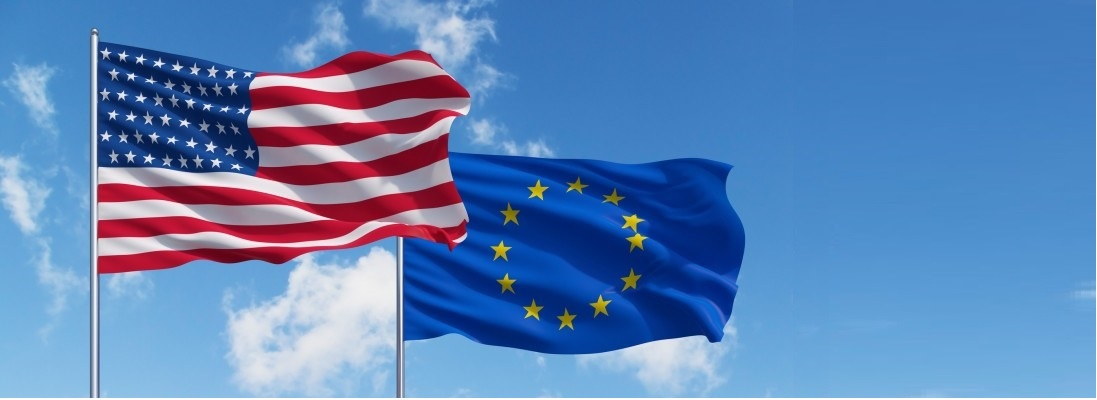 The Transatlantic Trade and Investment Partnership