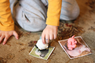 Toddler Time: Matching Animals to Pictures