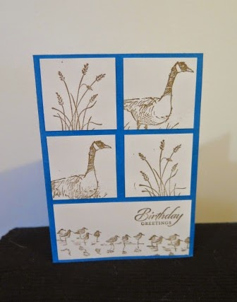 Pacific Point base zena kennedy independent stampin up demonstrator