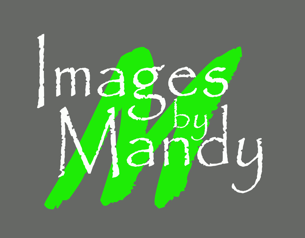 Images by Mandy, Austintown Ohio Photography Studio