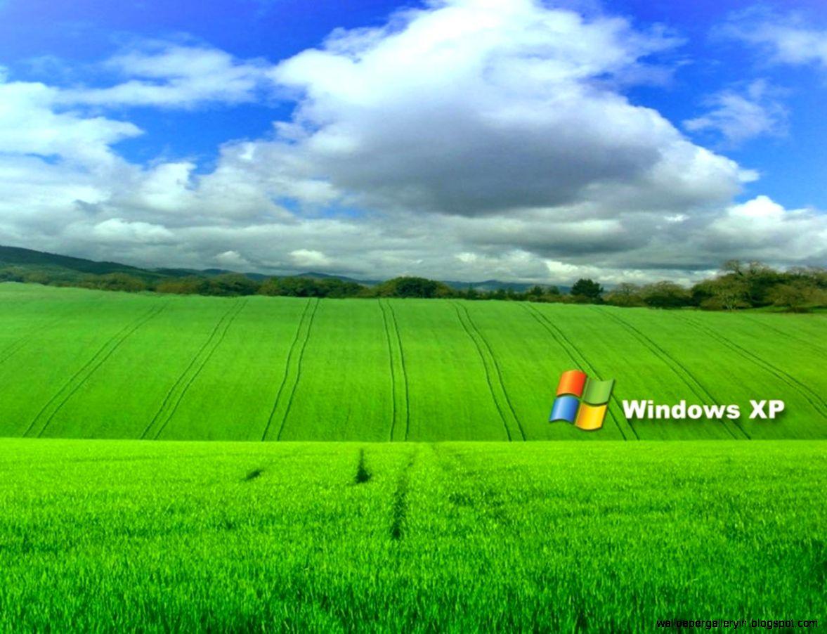 Free Windows XP Desktop Wallpaper computer desktop wallpaper