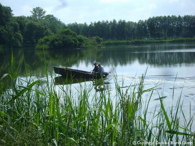 Pustelnia koło Opola Lubelskiego stawy gospodarstwa rybackiego. Fot. Dariusz Marek Gierej
