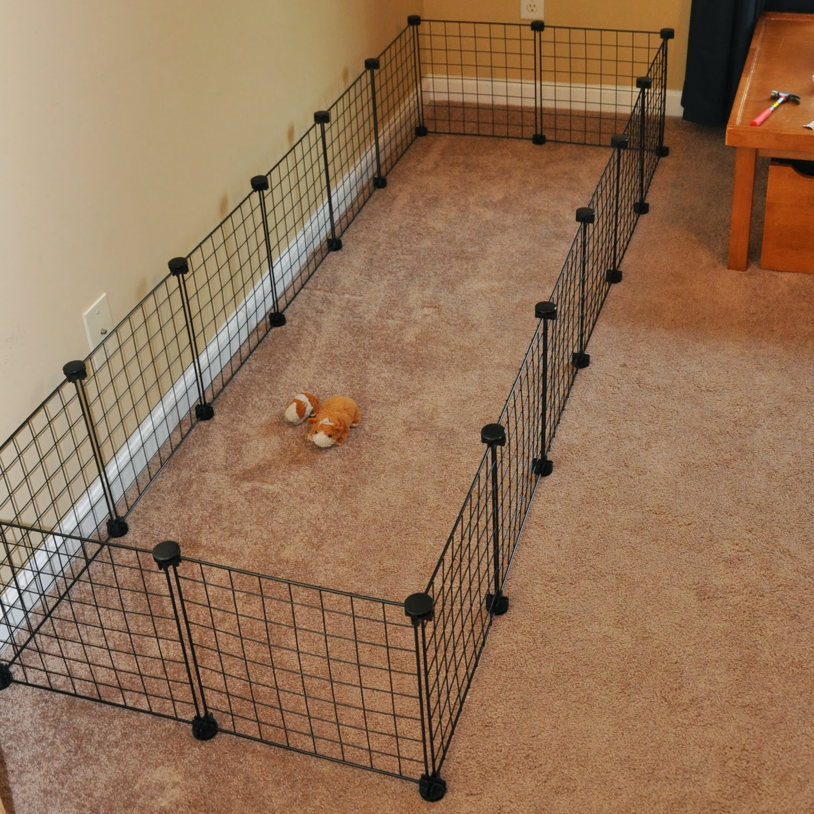 build guinea pig cage bing images
