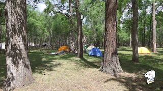 Some choose to camp out at Terelj National Park.