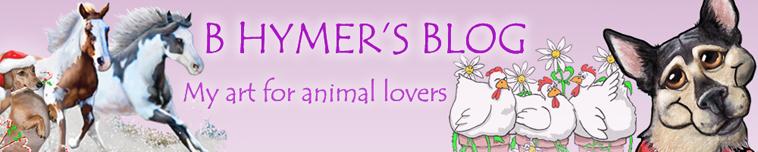B Hymer's Blog