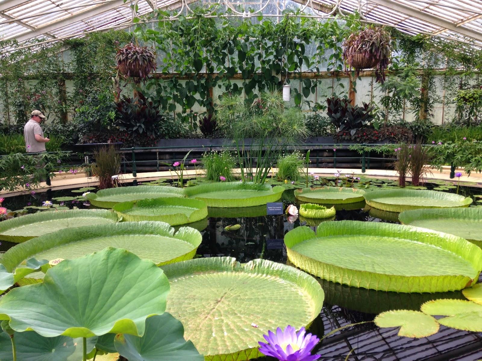 Les jardins de kew gardens horizon london for Le jardin richemond