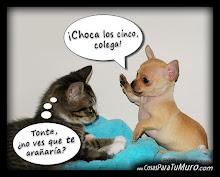 ¡VUELVE CUANDO QUIERAS! :-)