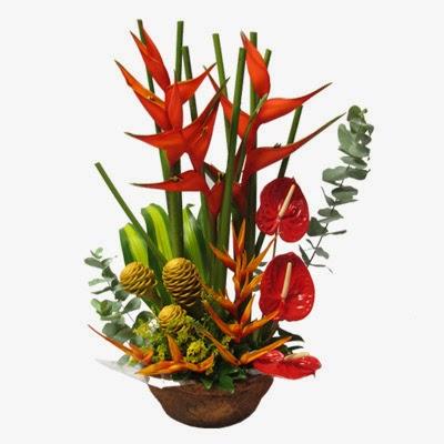 Flores Tropical