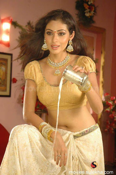 we saw her opposite vikram in anniyan which made waves all over unnale    Sadha In Anniyan