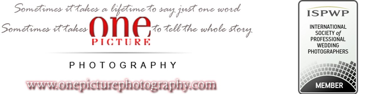 One Picture Photography - professional photography worldwide