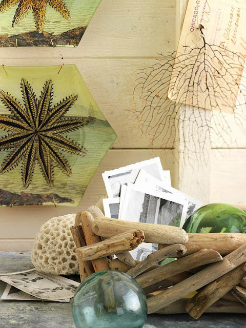 Modern Furniture: New Decorating with Natural Elements ...