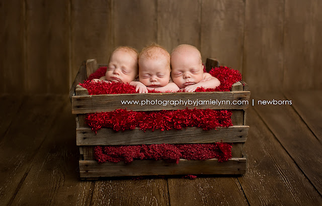 newborn triplets two boys one girl studio portrait photography wooden crate red blanket wooden floor and wall
