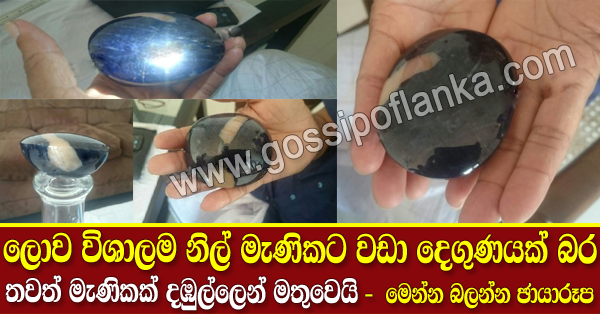 World's biggest blue sapphire found in Dambulla Sri lanka
