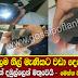 World's biggest blue sapphire found in Dambulla Sri lanka