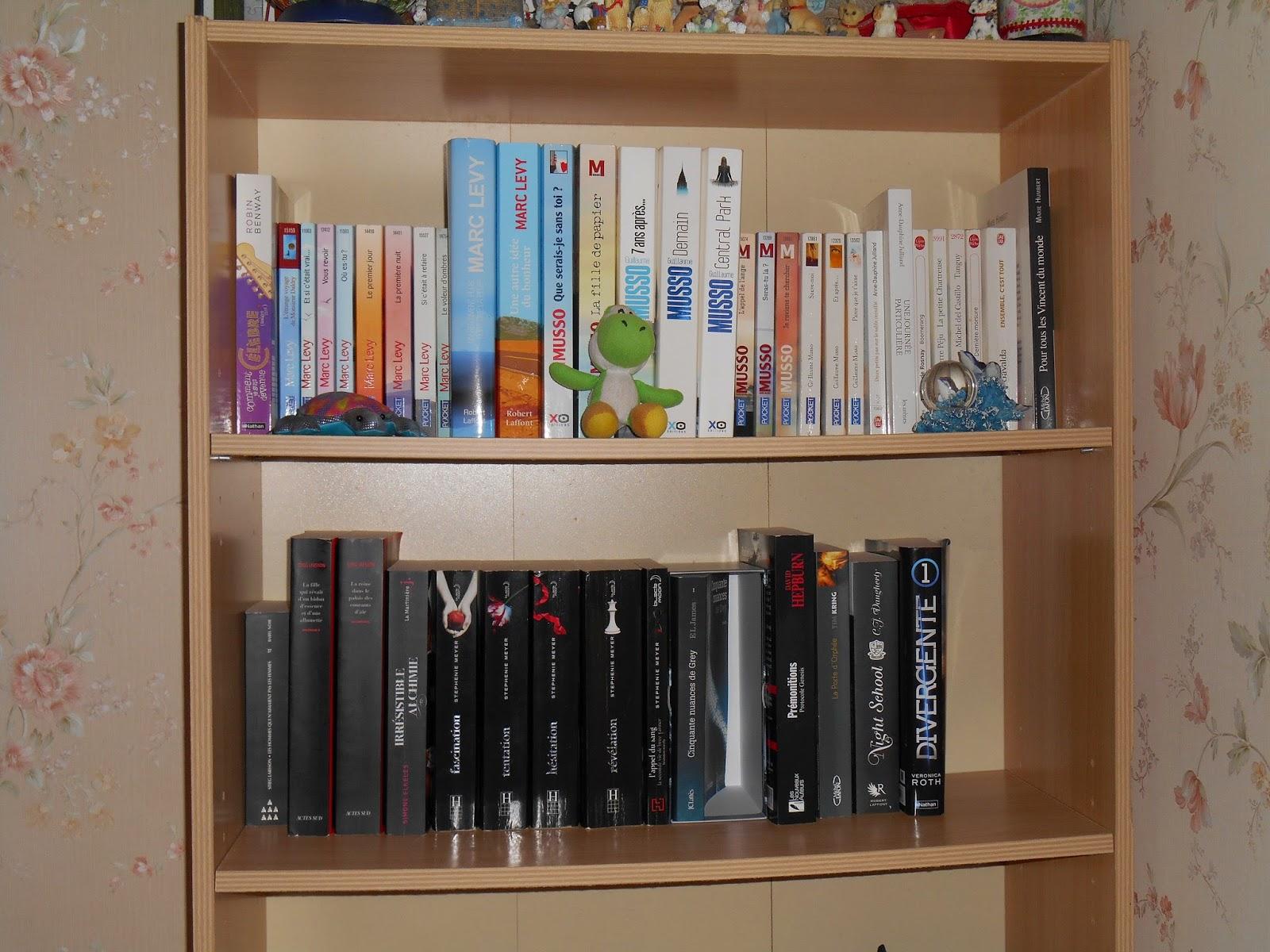 Vos bibliothèques en photo  DSCN0053