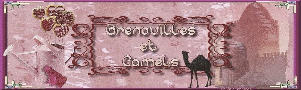 Grenouilles et Camels