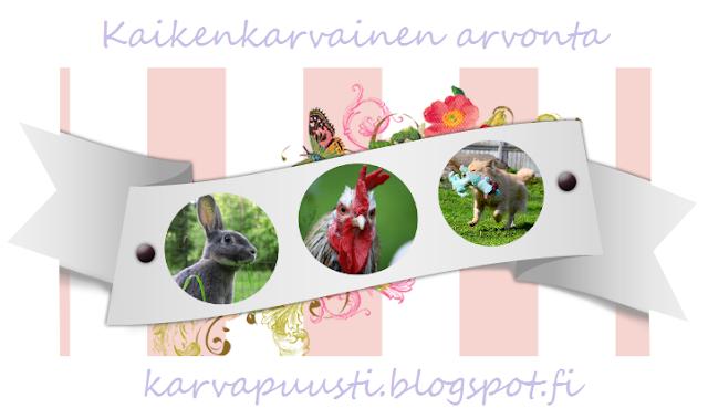 http://karvapuusti.blogspot.fi/2015/09/karvapuustin-synttarit.html