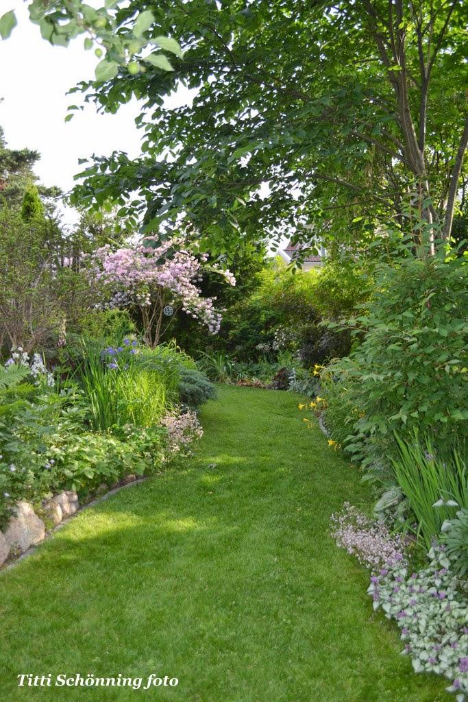 Nedre trädgården