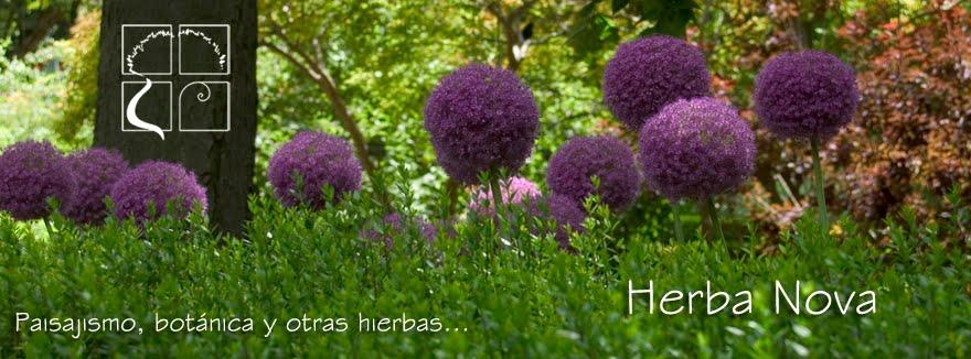 Blog de Paisajismo Herba Nova