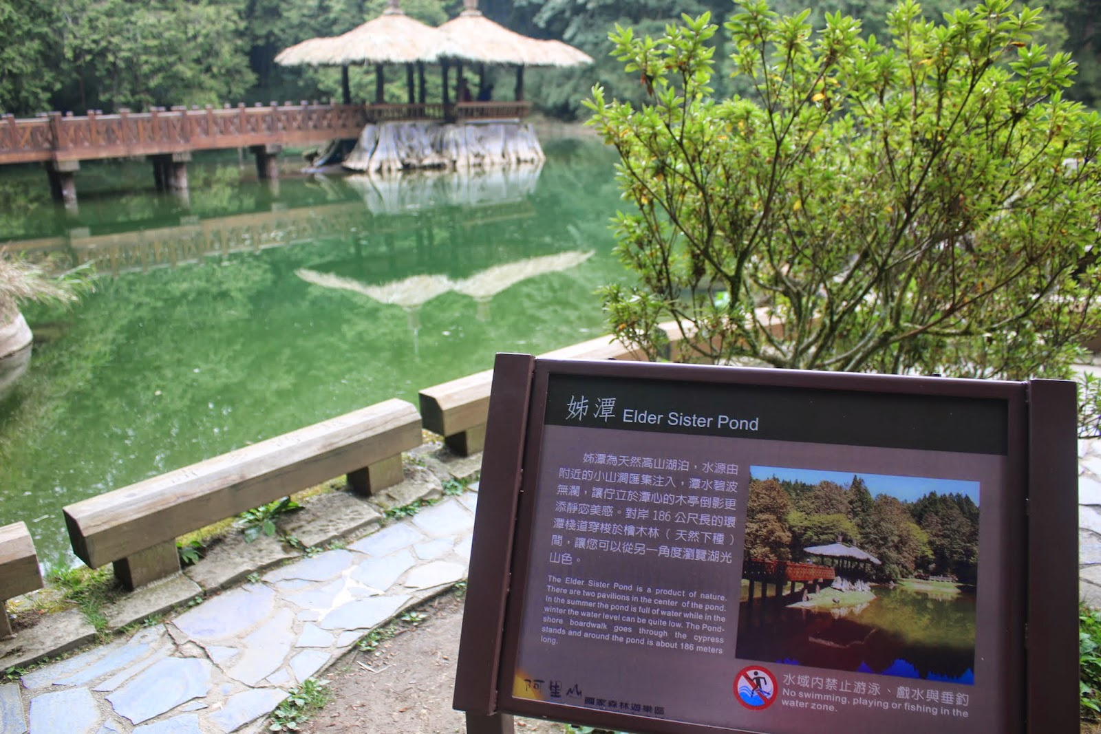 Elder Sister Pond at Alisan National Scenic Area in Chiayi county of Taiwan