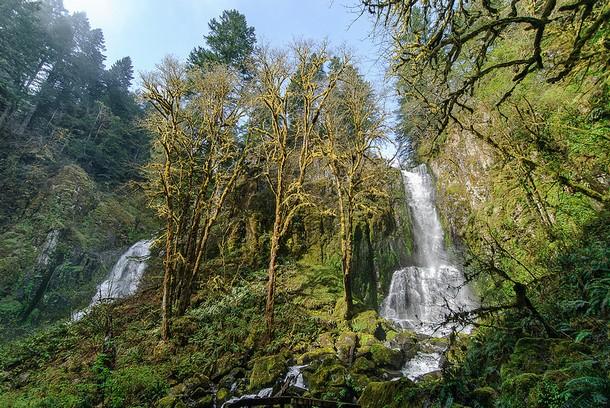 Oregon Lower Kentucky Falls